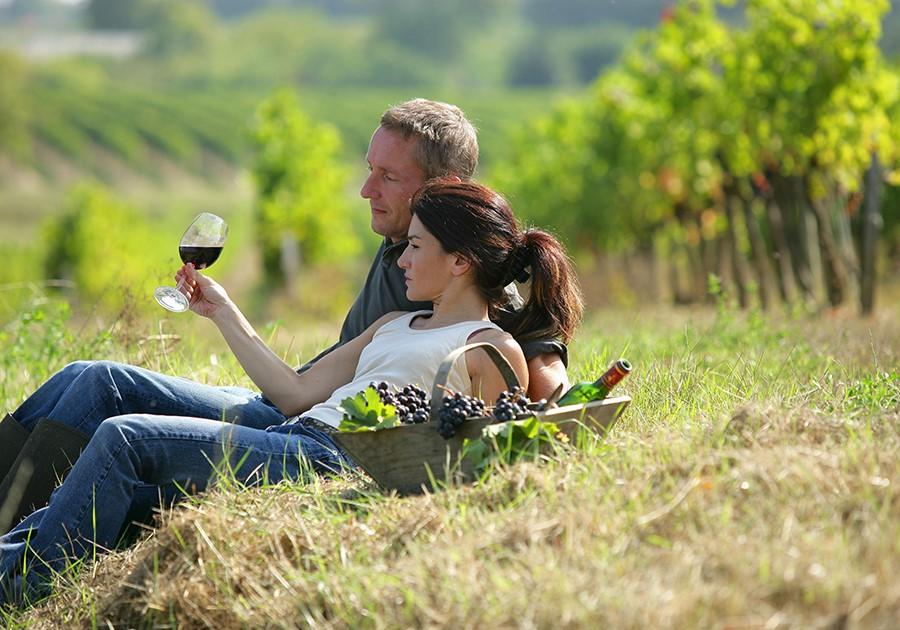 vino in toscana